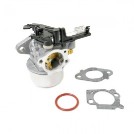 Carburateur moteur Briggs & Stratton