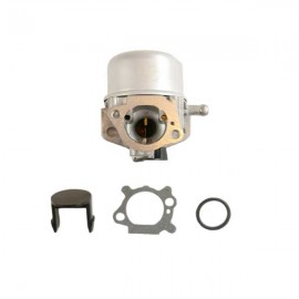 Carburateur Briggs et Stratton