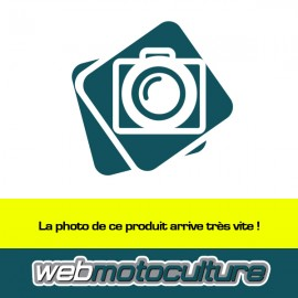 Carburateur moteur Honda
